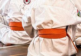 Catégorie Arts martiaux